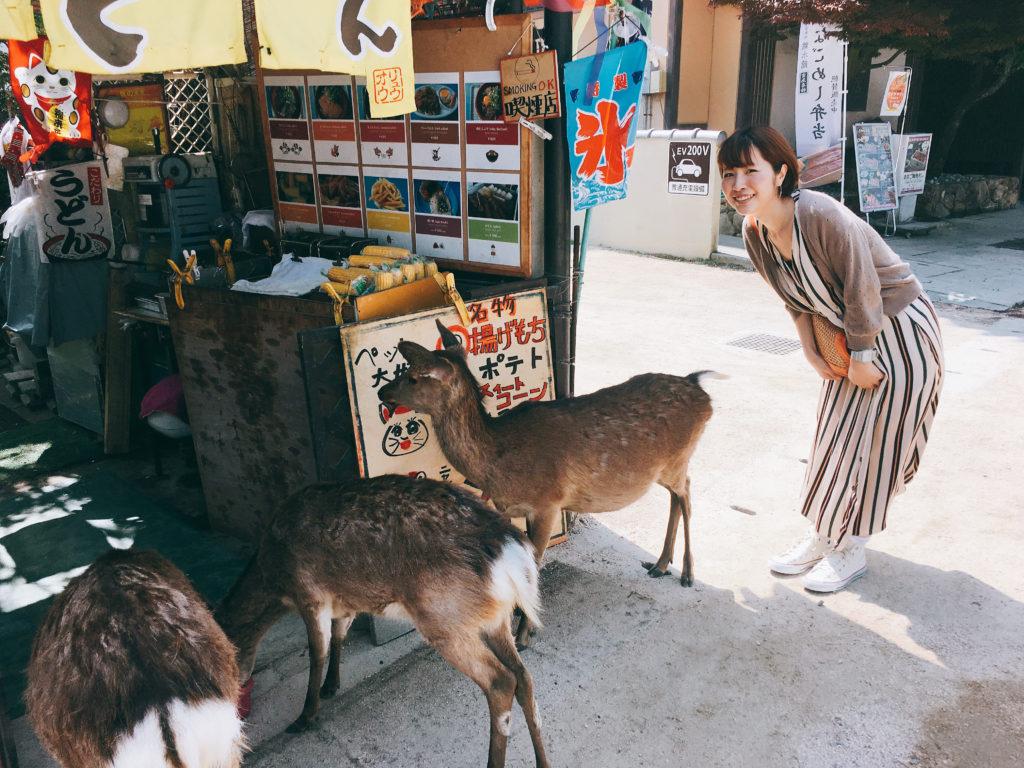 profile_junko_tanijiri